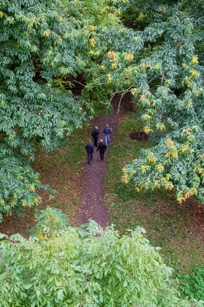 8.  Visitors on a path, seen from the Xstrata Treetop Walkway. (Click image to enlarge)